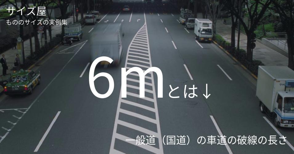 6mとは「一般道(国道)の車道の破線の長さ」くらいの高さです