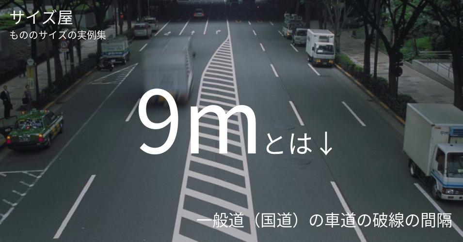 9mとは「一般道(国道)の車道の破線の間隔」くらいの高さです
