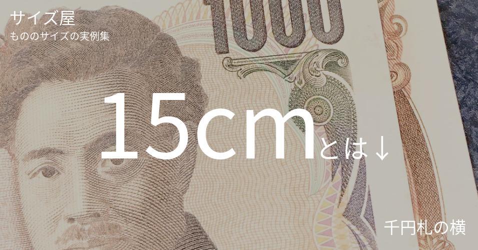 15cmとは「千円札の横」くらいの高さです