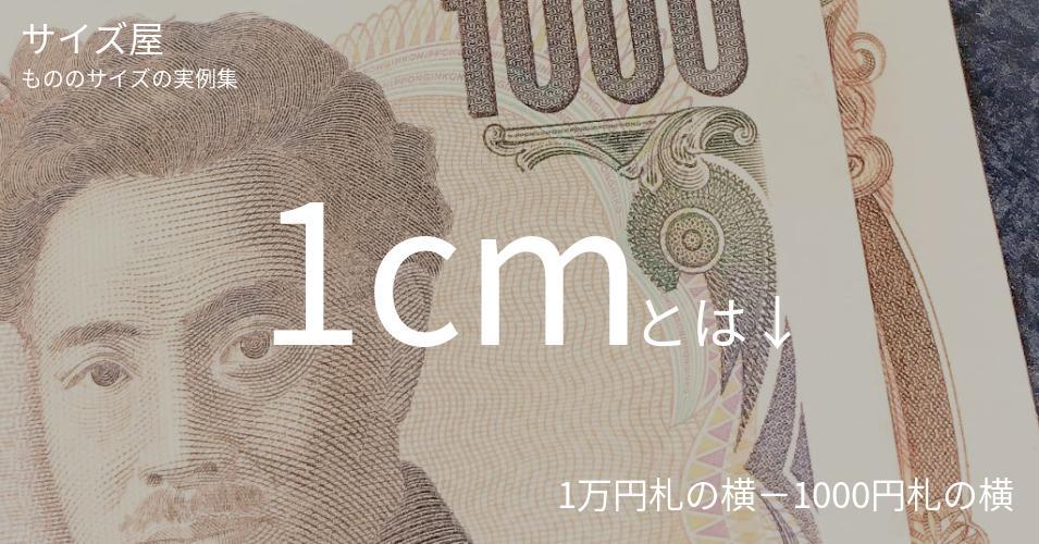 1cmとは「1万円札の横−1000円札の横」くらいの高さです