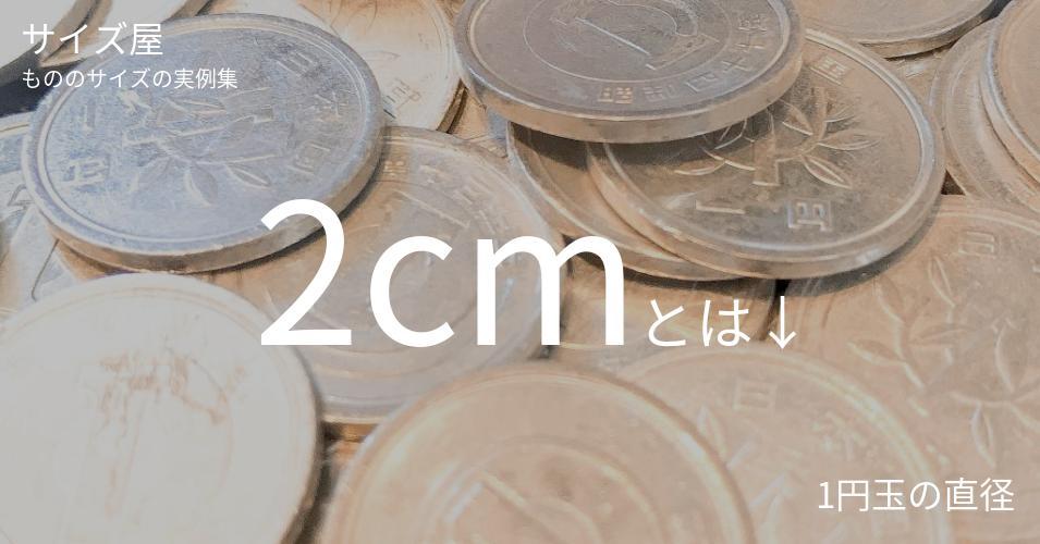 2cmとは「1円玉の直径」くらいの高さです