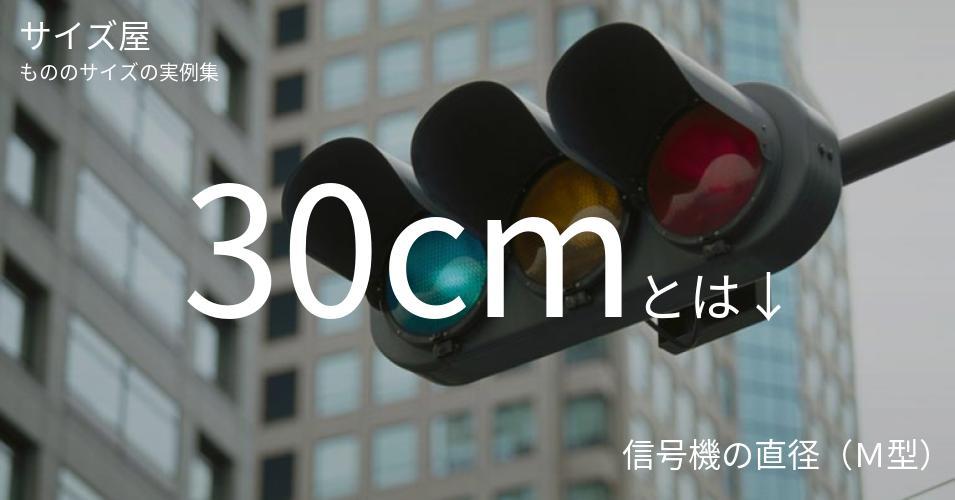 30cmとは「信号機の直径(M型)」くらいの高さです