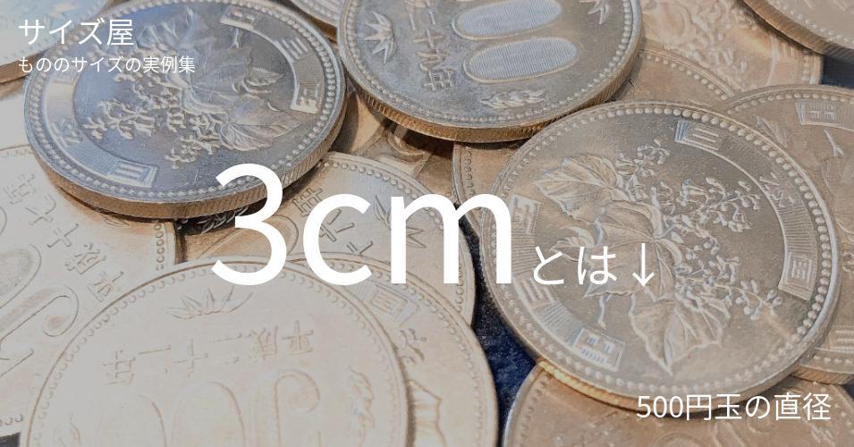 3cmとは「500円玉の直径」くらいの高さです