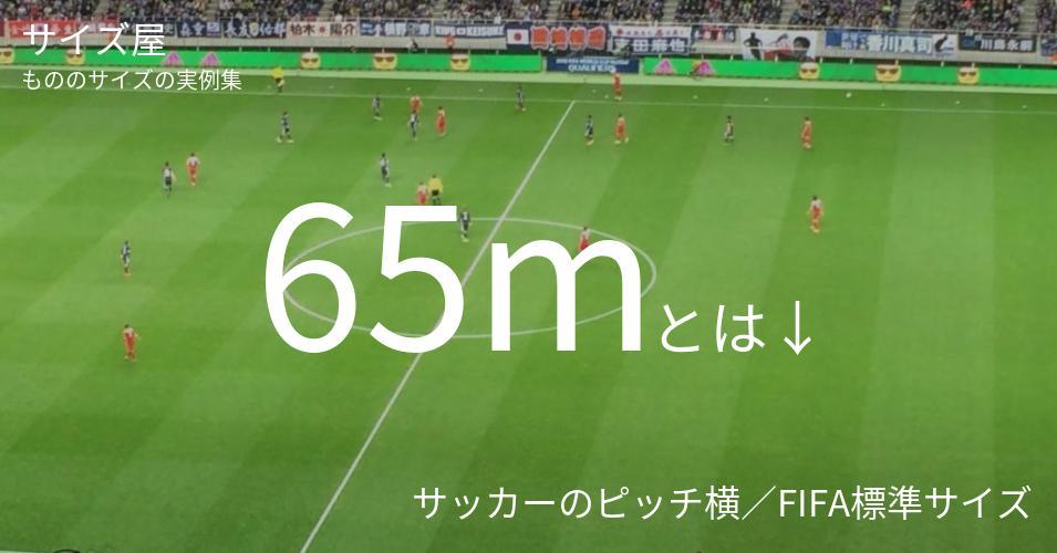 65mとは「サッカーのピッチ横/FIFA標準サイズ」くらいの高さです