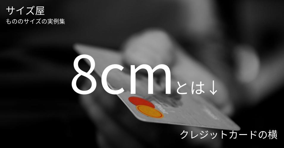 8cmとは「クレジットカードの横」くらいの高さです