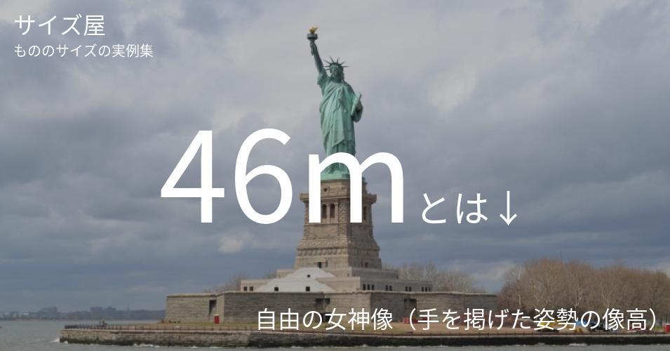 46mとは「自由の女神像(手を掲げた姿勢の像高)」くらいの高さです