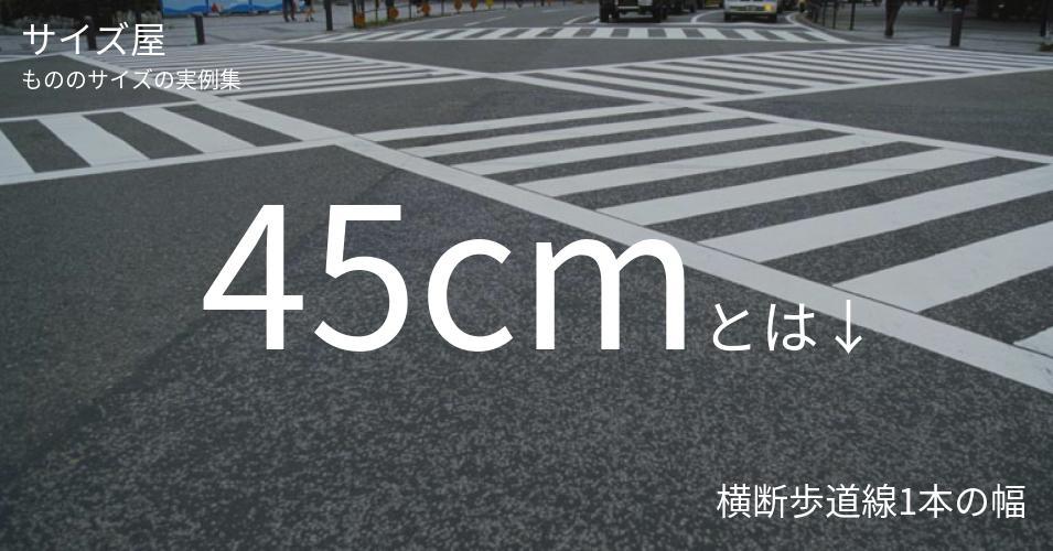 45cmとは「横断歩道線1本の幅」くらいの高さです