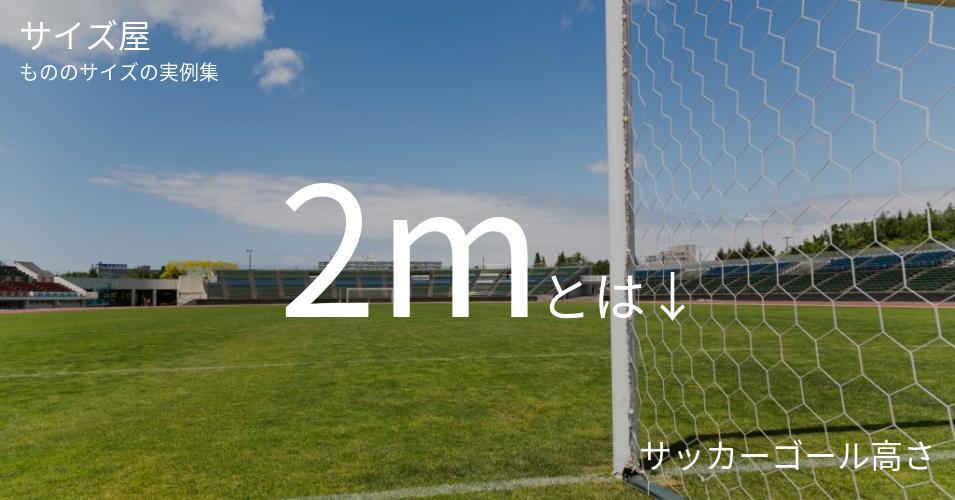 2mとは「サッカーゴール高さ」くらいの高さです