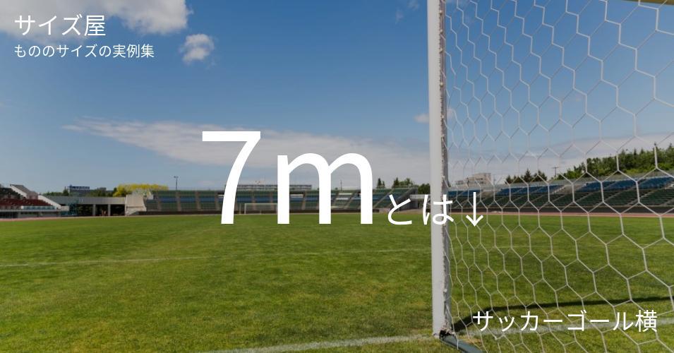 7mとは「サッカーゴール横」くらいの高さです