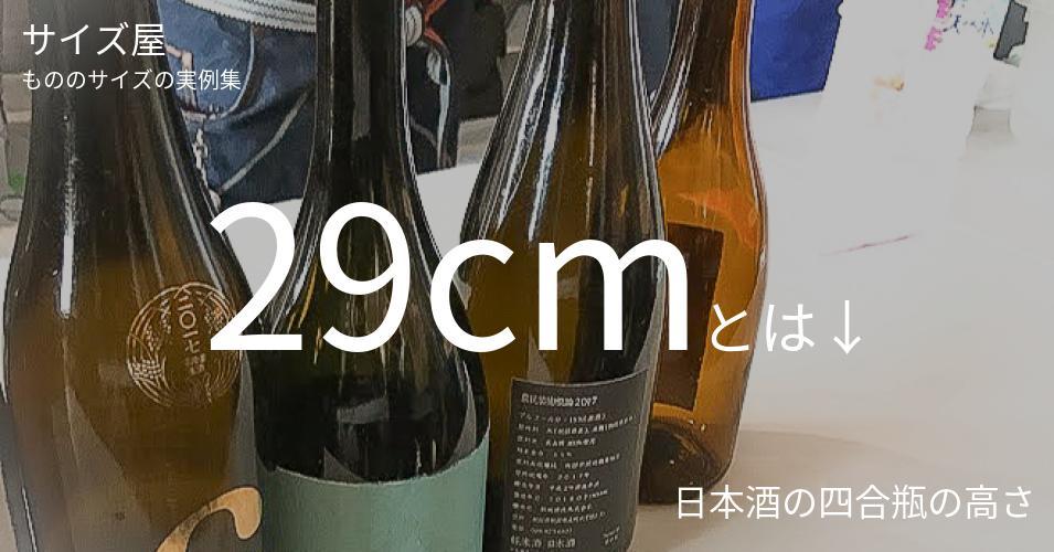 29cmとは「日本酒の四合瓶の高さ」くらいの高さです