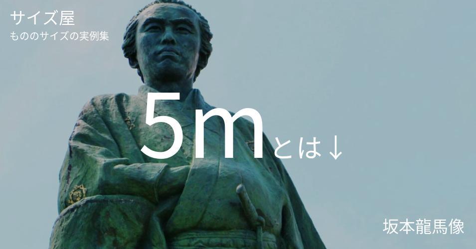 5mとは「坂本龍馬像」くらいの高さです