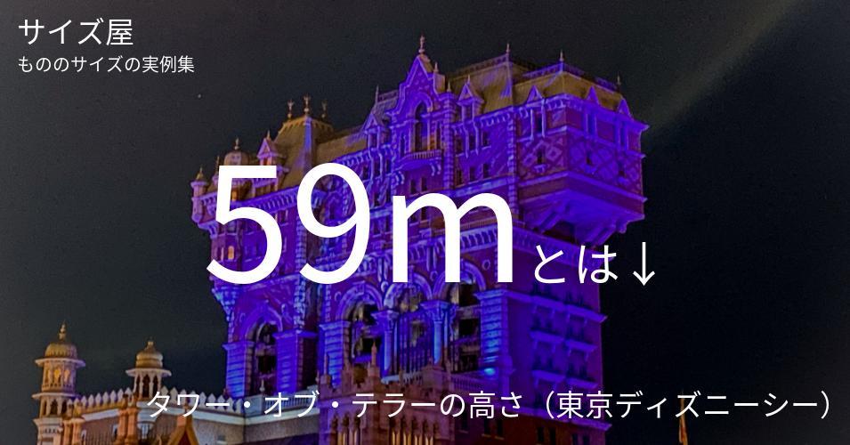 59mとは「タワー・オブ・テラーの高さ(東京ディズニーシー)」くらいの高さです