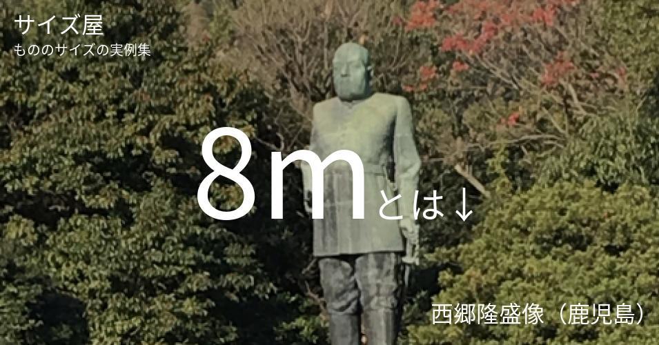 8mとは「西郷隆盛像(鹿児島)」くらいの高さです