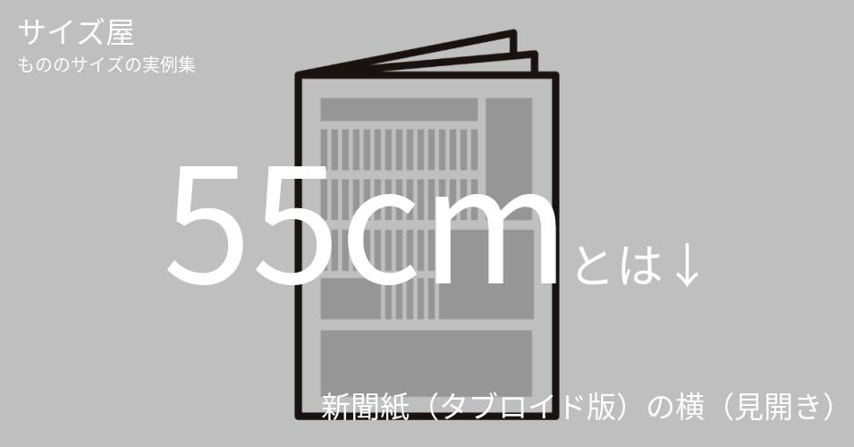 55cmとは「新聞紙(タブロイド版)の横(見開き)」くらいの高さです