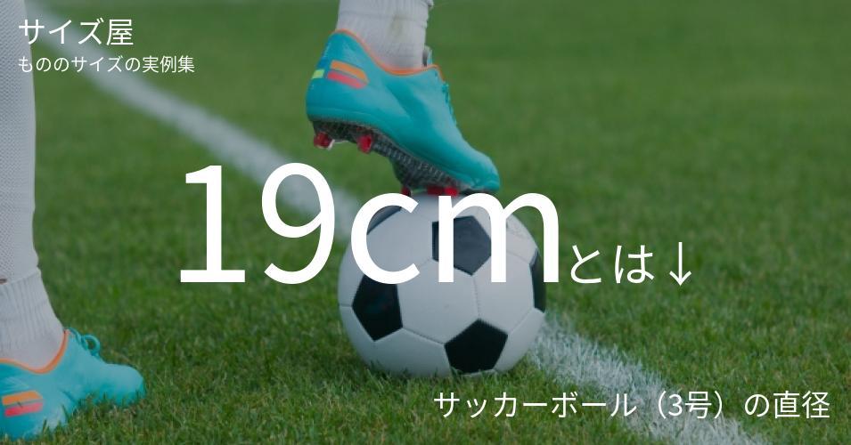 19cmとは「サッカーボール(3号)の直径」くらいの高さです