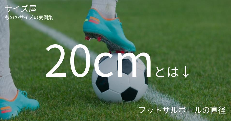 20cmとは「フットサルボールの直径」くらいの高さです