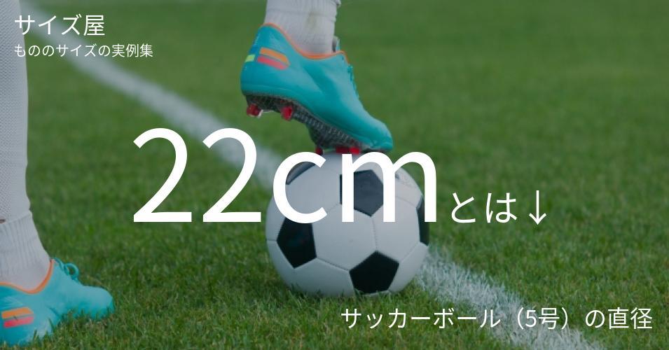 22cmとは「サッカーボール(5号)の直径」くらいの高さです
