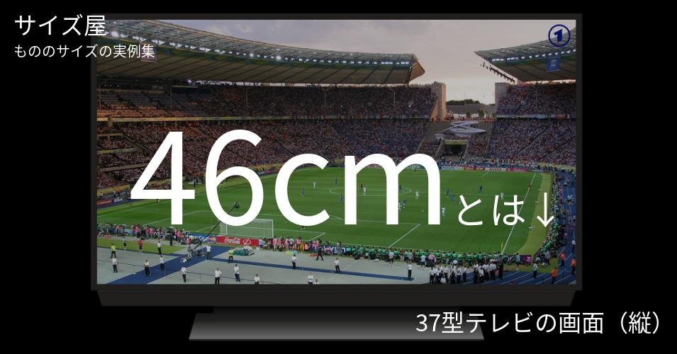 46cmとは「37型テレビの画面(縦)」くらいの高さです