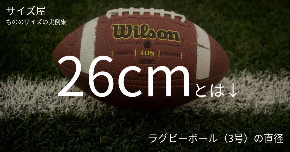 26cmとは「ラグビーボール(3号)の直径」くらいの高さです