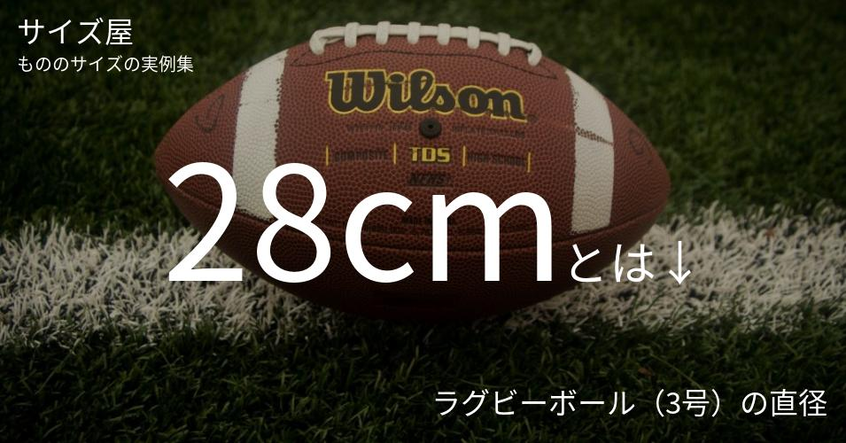 28cmとは「ラグビーボール(3号)の直径」くらいの高さです