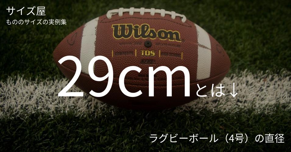 29cmとは「ラグビーボール(4号)の直径」くらいの高さです