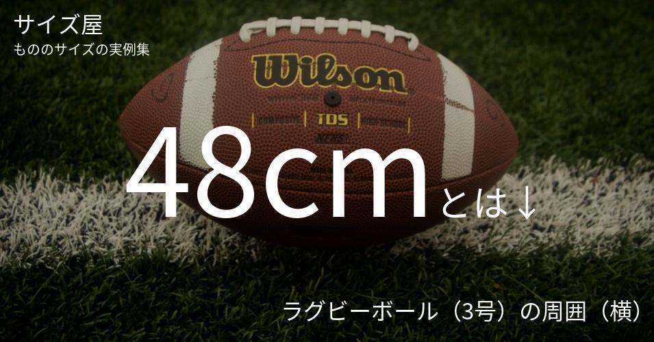 48cmとは「ラグビーボール(3号)の周囲(横)」くらいの高さです