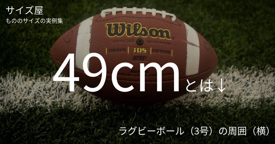 49cmとは「ラグビーボール(3号)の周囲(横)」くらいの高さです
