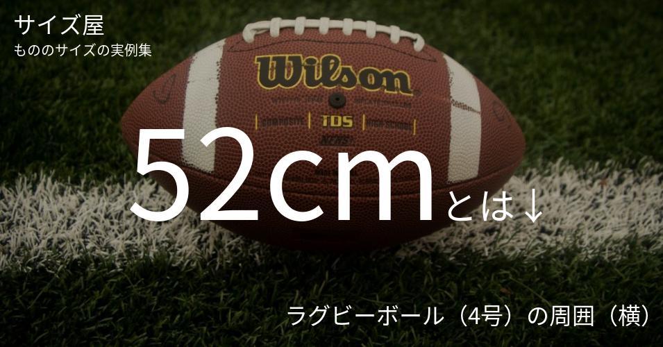 52cmとは「ラグビーボール(4号)の周囲(横)」くらいの高さです