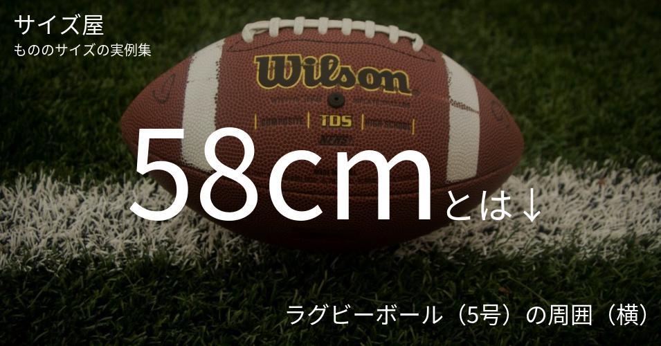 58cmとは「ラグビーボール(5号)の周囲(横)」くらいの高さです