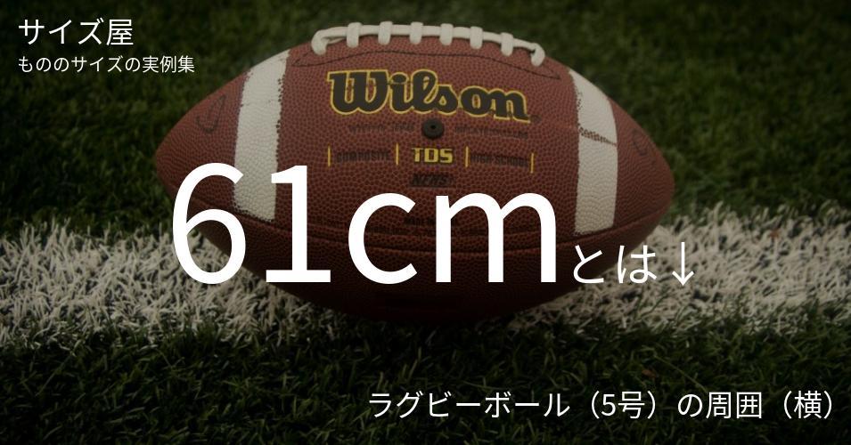 61cmとは「ラグビーボール(5号)の周囲(横)」くらいの高さです