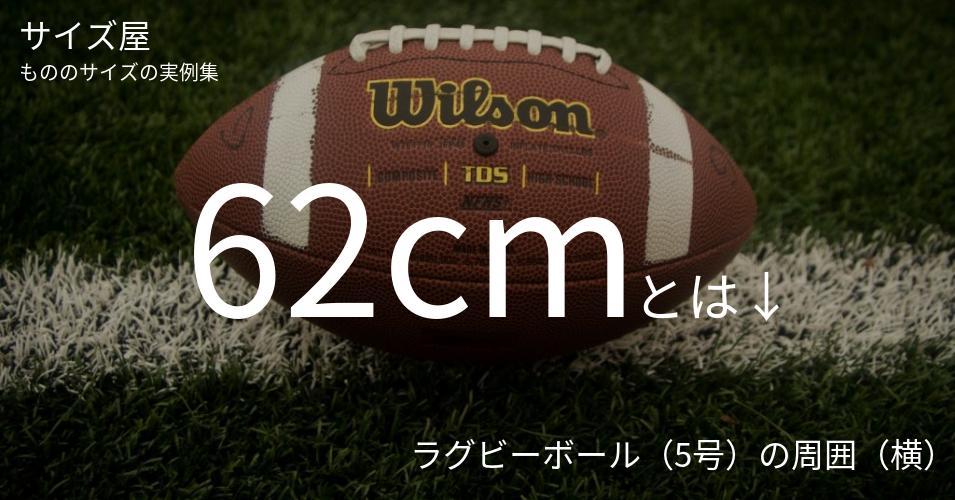 62cmとは「ラグビーボール(5号)の周囲(横)」くらいの高さです