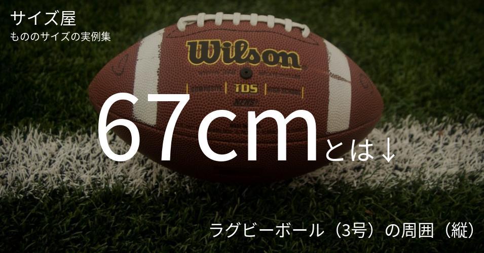 67cmとは「ラグビーボール(3号)の周囲(縦)」くらいの高さです