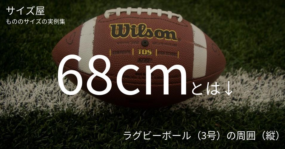68cmとは「ラグビーボール(3号)の周囲(縦)」くらいの高さです