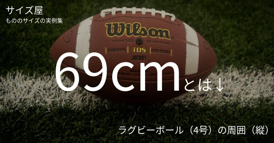 69cmとは「ラグビーボール(4号)の周囲(縦)」くらいの高さです