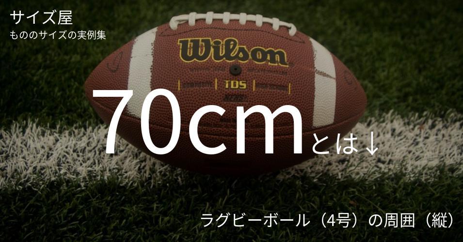 70cmとは「ラグビーボール(4号)の周囲(縦)」くらいの高さです