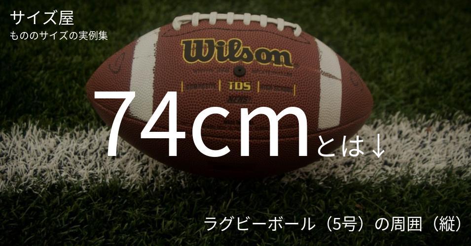 74cmとは「ラグビーボール(5号)の周囲(縦)」くらいの高さです