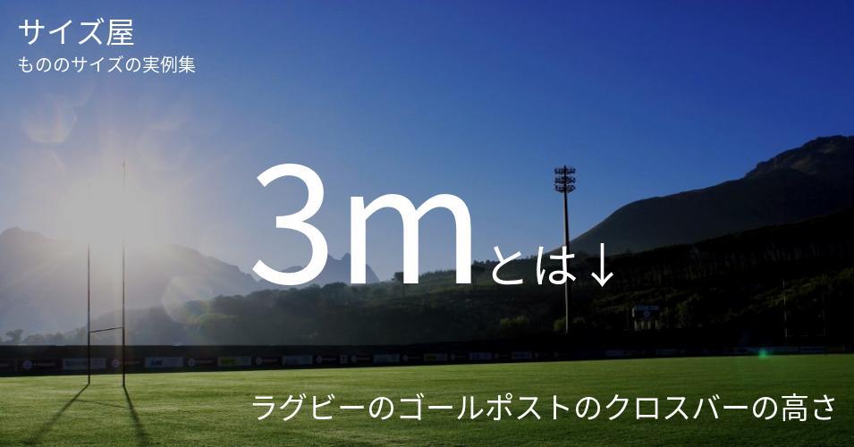 3mとは「ラグビーのゴールポストのクロスバーの高さ」くらいの高さです