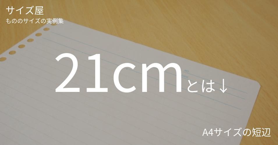21cmとは「A4サイズの短辺」くらいの高さです