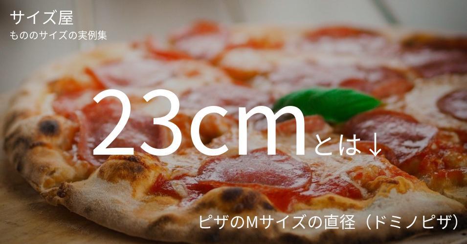 23cmとは「ピザのMサイズの直径(ドミノピザ)」くらいの高さです