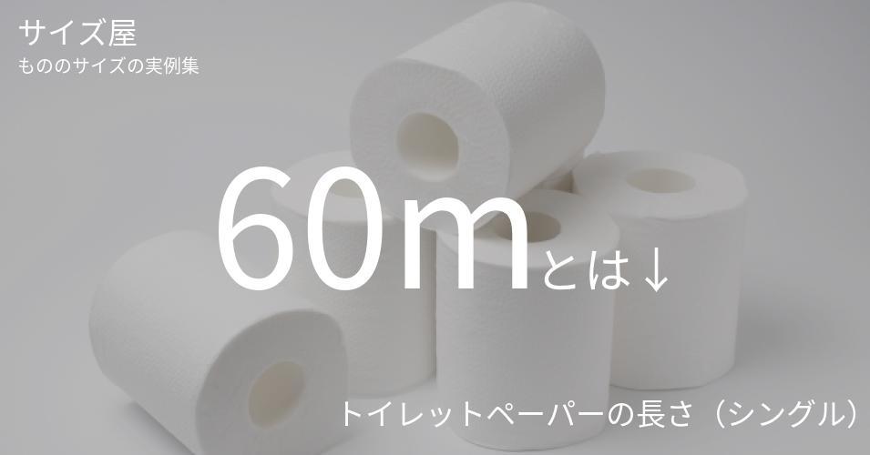 60mとは「トイレットペーパーの長さ(シングル)」くらいの高さです