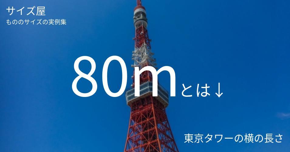 80mとは「東京タワーの横の長さ」くらいの高さです