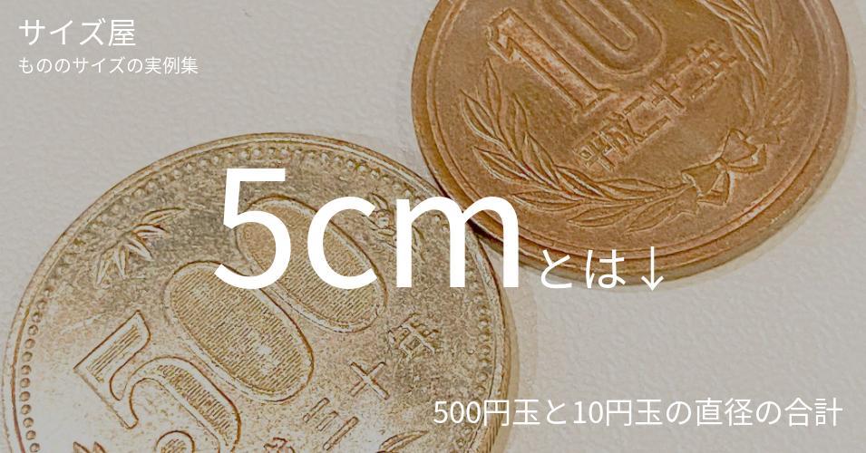 5cmとは「500円玉と10円玉の直径の合計」くらいの高さです