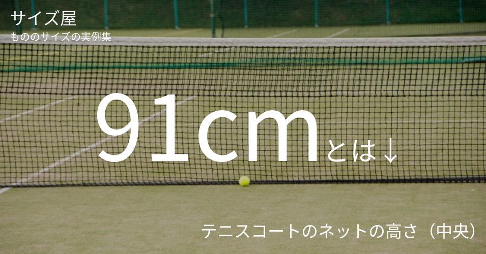 91cmとは「テニスコートのネットの高さ(中央)」くらいの高さです