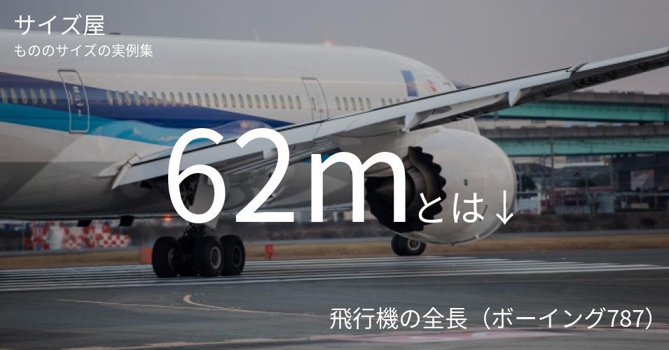 62mとは「飛行機の全長(ボーイング787)」くらいの高さです