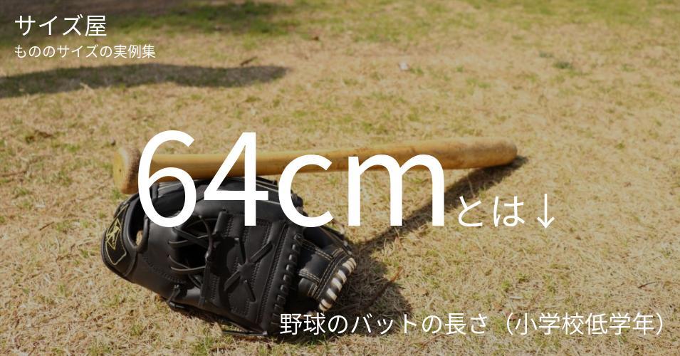 64cmとは「野球のバットの長さ(小学校低学年)」くらいの高さです