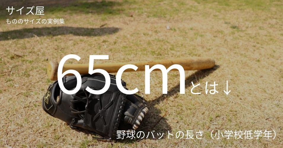 65cmとは「野球のバットの長さ(小学校低学年)」くらいの高さです