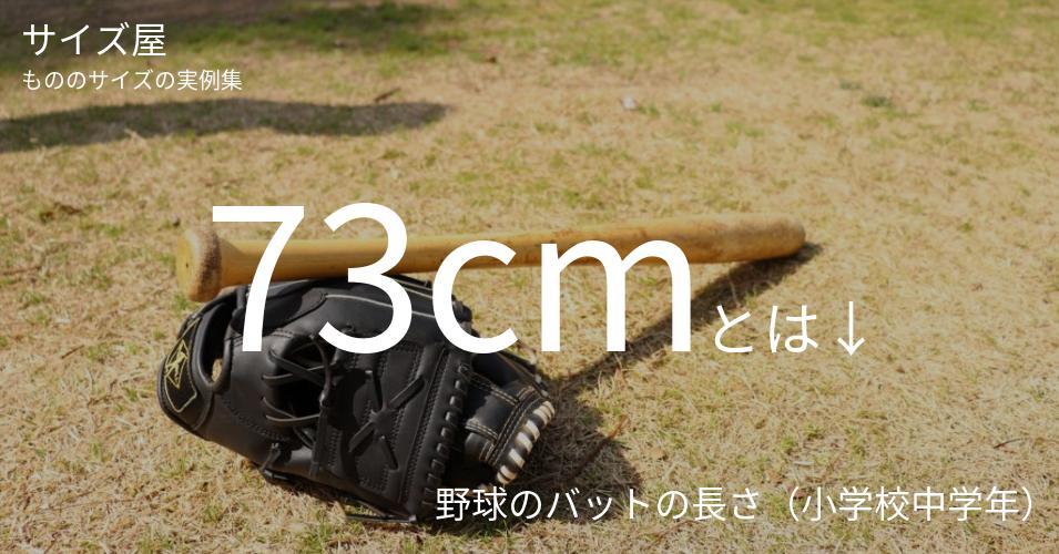 73cmとは「野球のバットの長さ(小学校中学年)」くらいの高さです