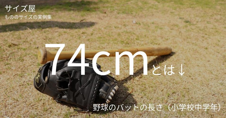 74cmとは「野球のバットの長さ(小学校中学年)」くらいの高さです