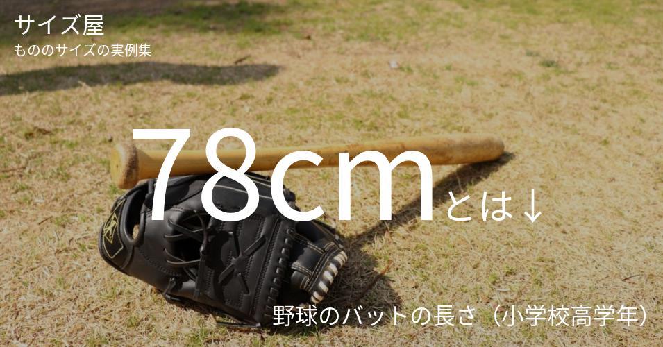 78cmとは「野球のバットの長さ(小学校高学年)」くらいの高さです