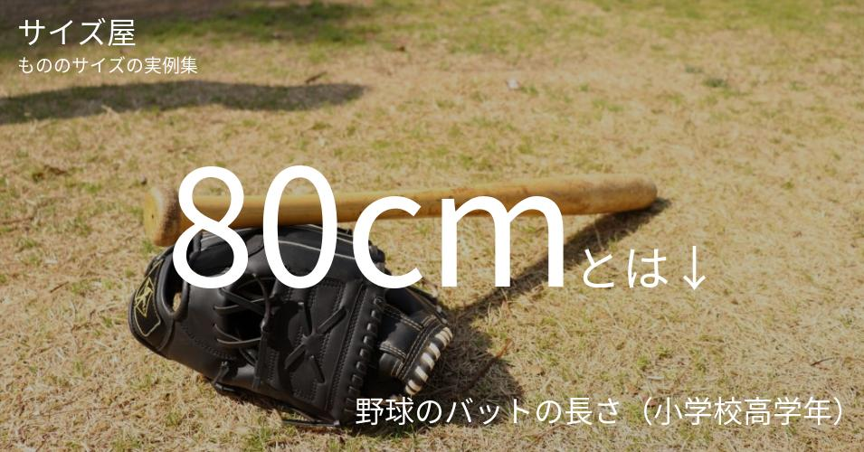 80cmとは「野球のバットの長さ(小学校高学年)」くらいの高さです